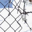 Stock Photo: Old barbed wire and metal lattice