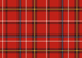 The Scottish plaid — Stock Photo