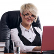 The charming young businesswoman — Stock Photo #2359494
