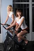 Zwei charmante Mädchen in einer Sporthalle — Stockfoto