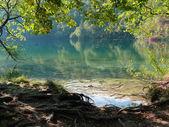 Lake. — Stockfoto