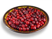 Cranberries congelados. — Foto Stock