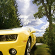 Stock Photo: Yellow Camaro