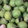 Royalty-Free Stock Photo: Circassian green walnuts