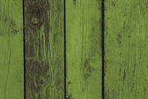 Old wooden fence. Green — Stock Photo