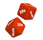 Life and death — Stock Photo