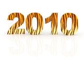 Rok tygra — Stock fotografie