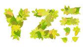 Alfabeto - letras con un verde hojas — Foto de Stock