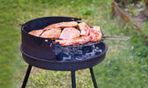 Summer grilling — Stock Photo