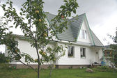 Beautiful country house with an apple tree in front of it — Stock Photo