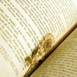 Dried flower used as a bookmark — Foto de Stock