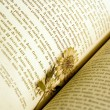 Dried flower used as a bookmark - Stock Photo