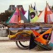Many small colorful ships ready to navigate in a parisian park — Stock Photo