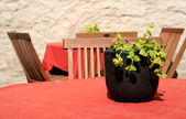 Street cafe table with red table-cloth and a plant — Stock Photo
