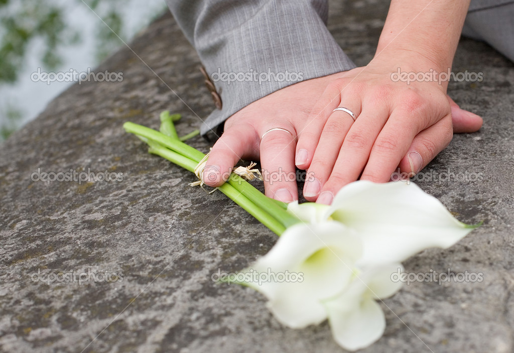 Just married. Hands of bride and groom with wedding rings  Stock Photo #1060876