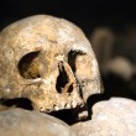 Closeup of an old skull — Stock Photo
