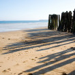 Traditional wooden stakes at Saint-Malo — Stock Photo