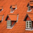Red tile roof and garrets - Stockfoto