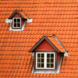 Red tile roof and garrets — Stock Photo #1076128