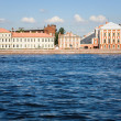 St.Petersburg State University — Stock Photo #1076520