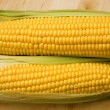 Two corncobs - Stock Photo