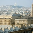 Bird-view of Paris — Stock Photo
