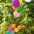 Stock Photo: Bunch of many colored balloons