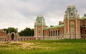 Tsaritsino Palace in Moscow — Stock Photo