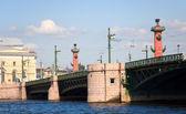 Pont du palais et les colonnes rostrales — Photo