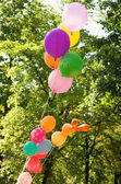 Bunch of many colored balloons — Stock Photo