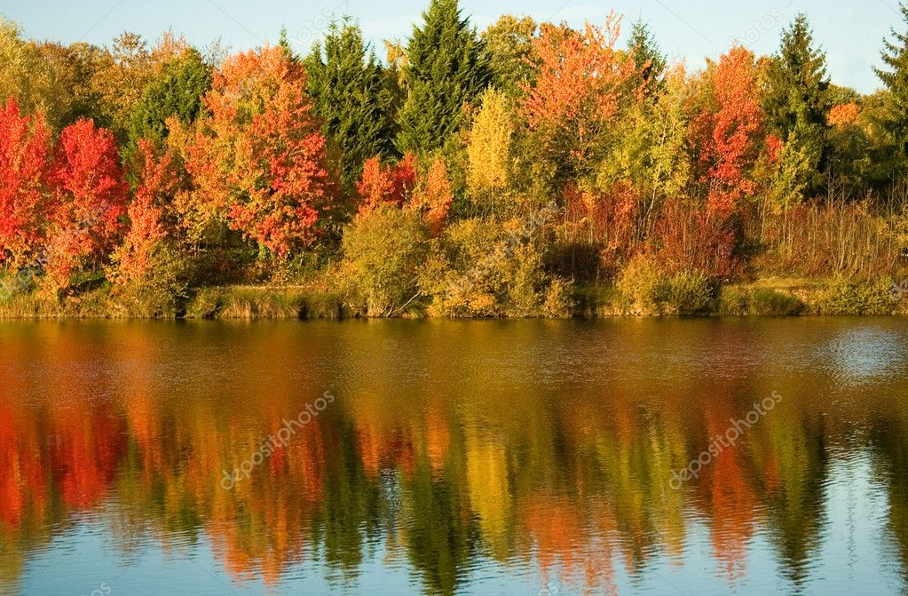 Bright autumn trees with their reflection in water — Stockfoto #1077667