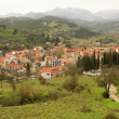 Greek mountain village of Kalavryta — Stock Photo #1712789
