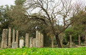 Ancient columns in Archea Olympia — Foto de Stock