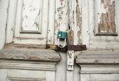 Old door. — Stock Photo