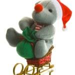 Christmas Decoration — Stock Photo #1165931