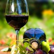 Glass and bottle of red wine — Stock Photo