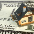 House on big dollar - Stock Photo