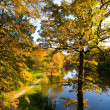 Autumn landscape of lake — Stock Photo #1373867