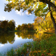 Autumn landscape of lake — Stockfoto