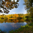 Autumn landscape of lake — Stock Photo #1374035