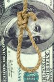 Rope loop on big dollar background — Stock Photo
