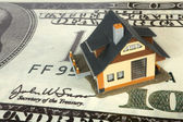House on big dollar — Stock Photo
