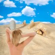 Landscape with seashell on sky — Stock Photo #1397554