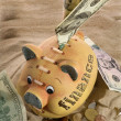 Piggy Bank - Financial Crisis — Foto Stock