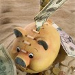 Piggy Bank - Financial Crisis — ストック写真
