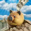 Piggy Bank - Financial Crisis — Stock Photo