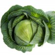 Cabbage isolated on white — Stockfoto