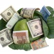 Money situated on green cabbage on white — Stock Photo