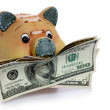 Piggy Bank - Financial Crisis — Stockfoto