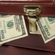 Stock Photo: Briefcase with money